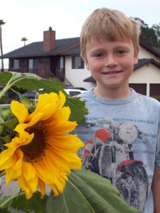 Ryan and the sunflower he grew from a seed